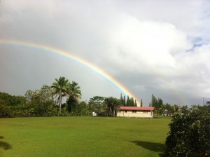 Picture of a Hilo Rainbow